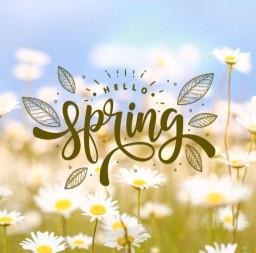https://fizzymagic.com/spring2020/